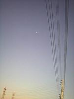 p240.jpg
